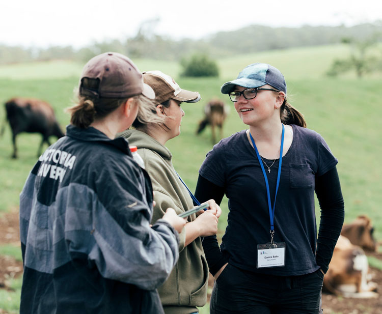 Young Dairy Network